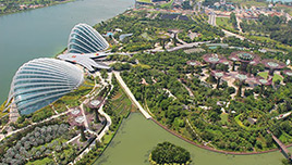 Gardens by the Bay Singapur EN